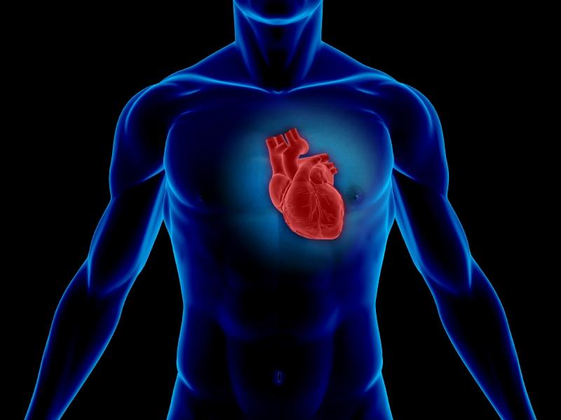 Serce w dobrej kondycji