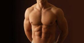 budowa mięśni