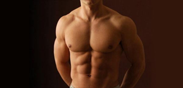 Z czego zbudowane są mięśnie?