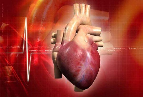Serce – jak o nie zadbać?