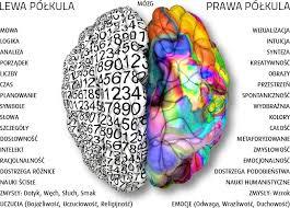 Wpływ aktywności fizycznej na funkcjonowanie mózgu